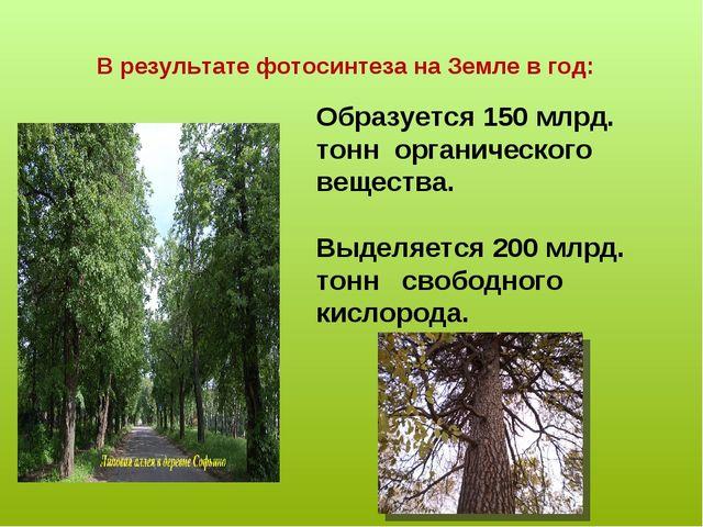 В результате фотосинтеза на Земле в год: Образуется 150 млрд. тонн органическ...