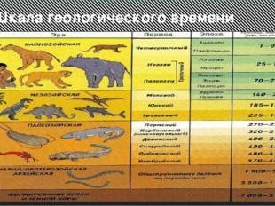 Шкала геологического времени