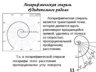 Логарифмическая спираль «Удивительное рядом» Логарифмическая спираль является