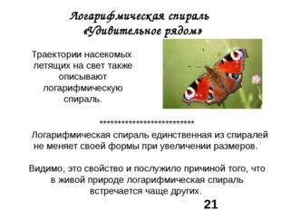 Логарифмическая спираль «Удивительное рядом» Траектории насекомых летящих на
