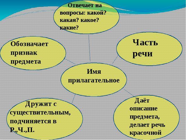 Дружит с существительным, подчиняется в Р.,Ч.,П. Имя прилагательное Отвечае...