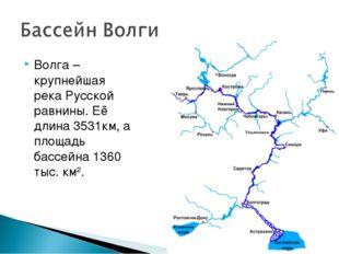 Волга – крупнейшая река Русской равнины. Её длина 3531км, а площадь бассейна