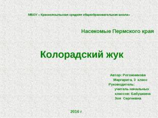 МБОУ « Красноясыльская средняя общеобразовательная школа» Насекомые Пермского