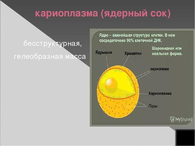хроматин состоит из ДНК и белка из хроматина состоят хромосомы ген – участок...
