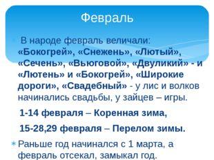 В народе февраль величали: «Бокогрей», «Снежень», «Лютый», «Сечень», «Вьюгов