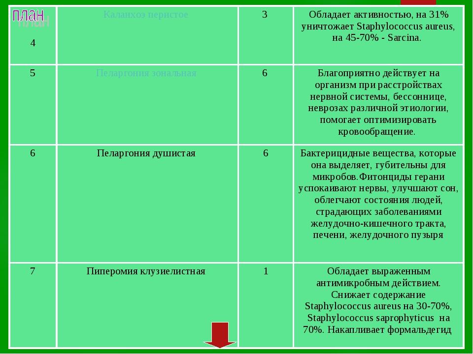 4Каланхоэ перистое 3 Обладает активностью, на 31% уничтожает Staphylococc...