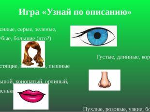 Игра «Узнай по описанию» Красивые, серые, зеленые, голубые, большие (что?) Гу