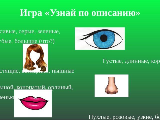 Игра «Узнай по описанию» Красивые, серые, зеленые, голубые, большие (что?) Гу...
