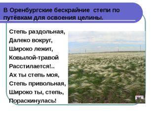 В Оренбургские бескрайние степи по путёвкам для освоения целины. Степь раздол