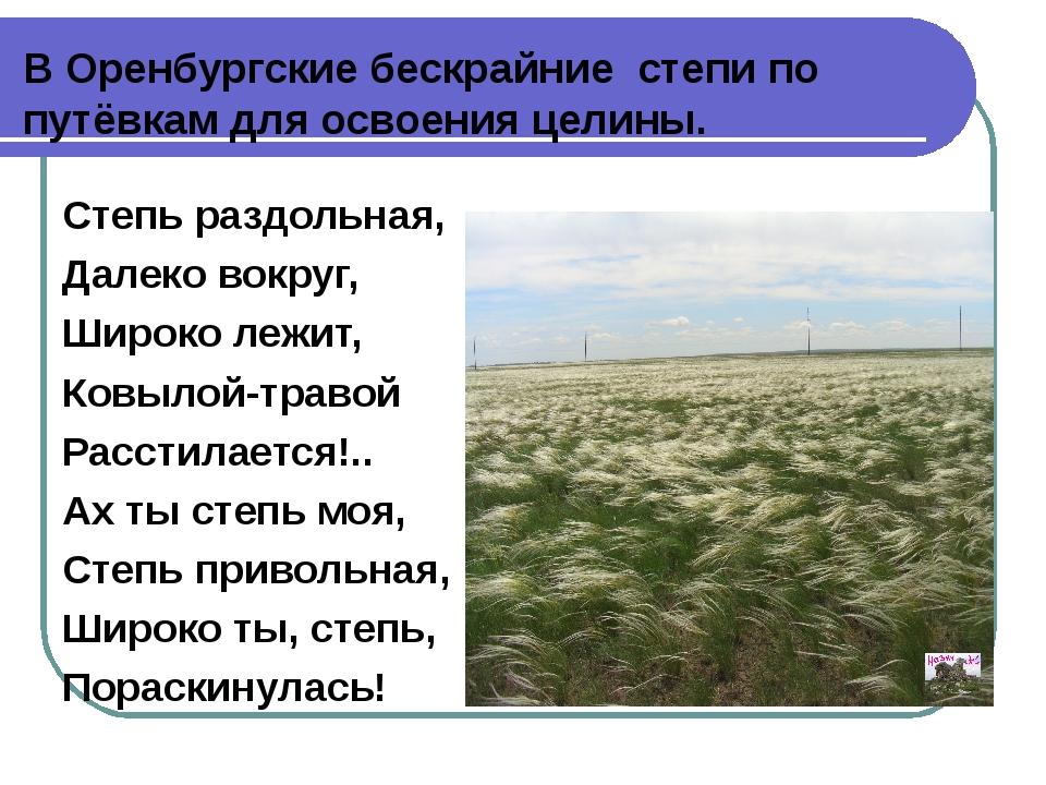 В Оренбургские бескрайние степи по путёвкам для освоения целины. Степь раздол...