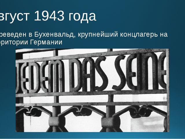 Август 1943 года Переведен в Бухенвальд, крупнейший концлагерь на территории...