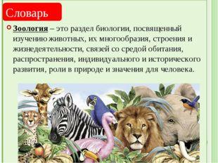 Зоология – это раздел биологии, посвященный изучению животных, их многообраз