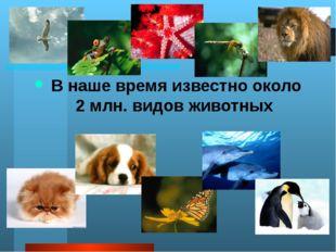 А много ли животных вы знаете ребята? Какие из этих животных обитают в Росси