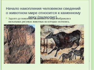 Начало накопления человеком сведений о животном мире относится к каменному в