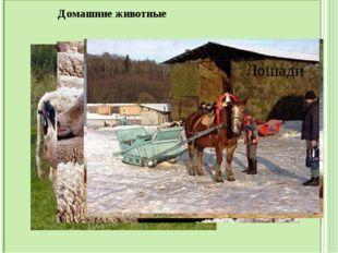 Памятники собаке: Самый знаменитый памятник собаке, находящийся в Париже, по
