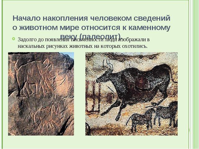 Начало накопления человеком сведений о животном мире относится к каменному в...