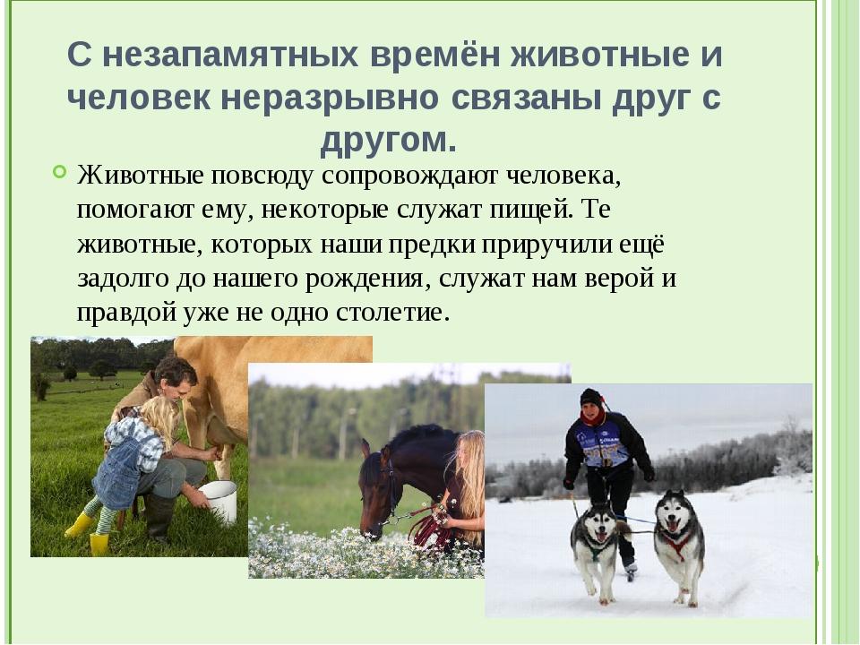 С незапамятных времён животные и человек неразрывно связаны друг с другом....