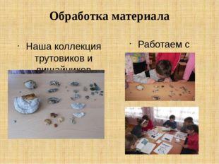 Обработка материала Наша коллекция трутовиков и лишайников Работаем с увлечен