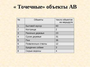 « Точечные» объекты АВ № Объекты Число объектовна маршруте 1 Бытовой мусор 63