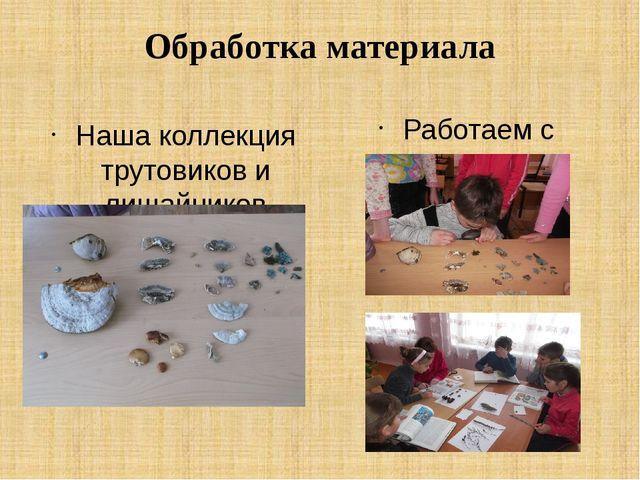 Обработка материала Наша коллекция трутовиков и лишайников Работаем с увлечен...