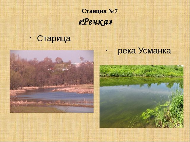 Станция №7 «Речка» Старица река Усманка