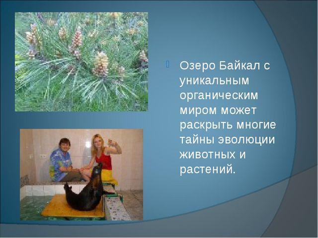 Озеро Байкал с уникальным органическим миром может раскрыть многие тайны эвол...