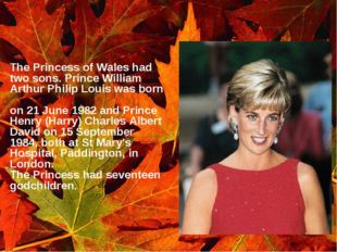 The Princess of Wales had two sons. Prince William Arthur Philip Louis was b