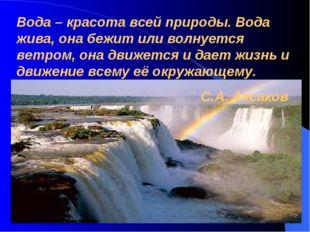 Вода – красота всей природы. Вода жива, она бежит или волнуется ветром, она д