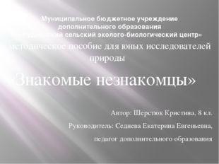 Муниципальное бюджетное учреждение дополнительного образования «Руднянский се
