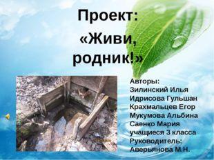 Проект: «Живи, родник!» Авторы: Зилинский Илья Идрисова Гульшан Крахмальцев Е
