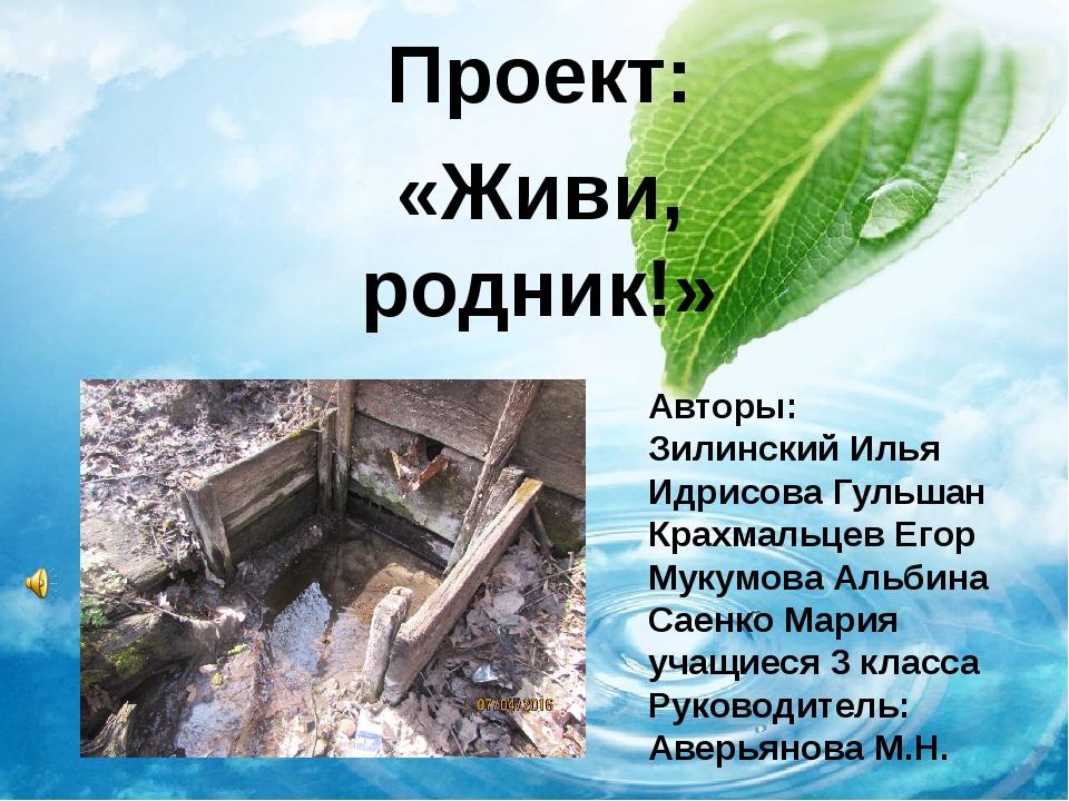 Проект: «Живи, родник!» Авторы: Зилинский Илья Идрисова Гульшан Крахмальцев Е...
