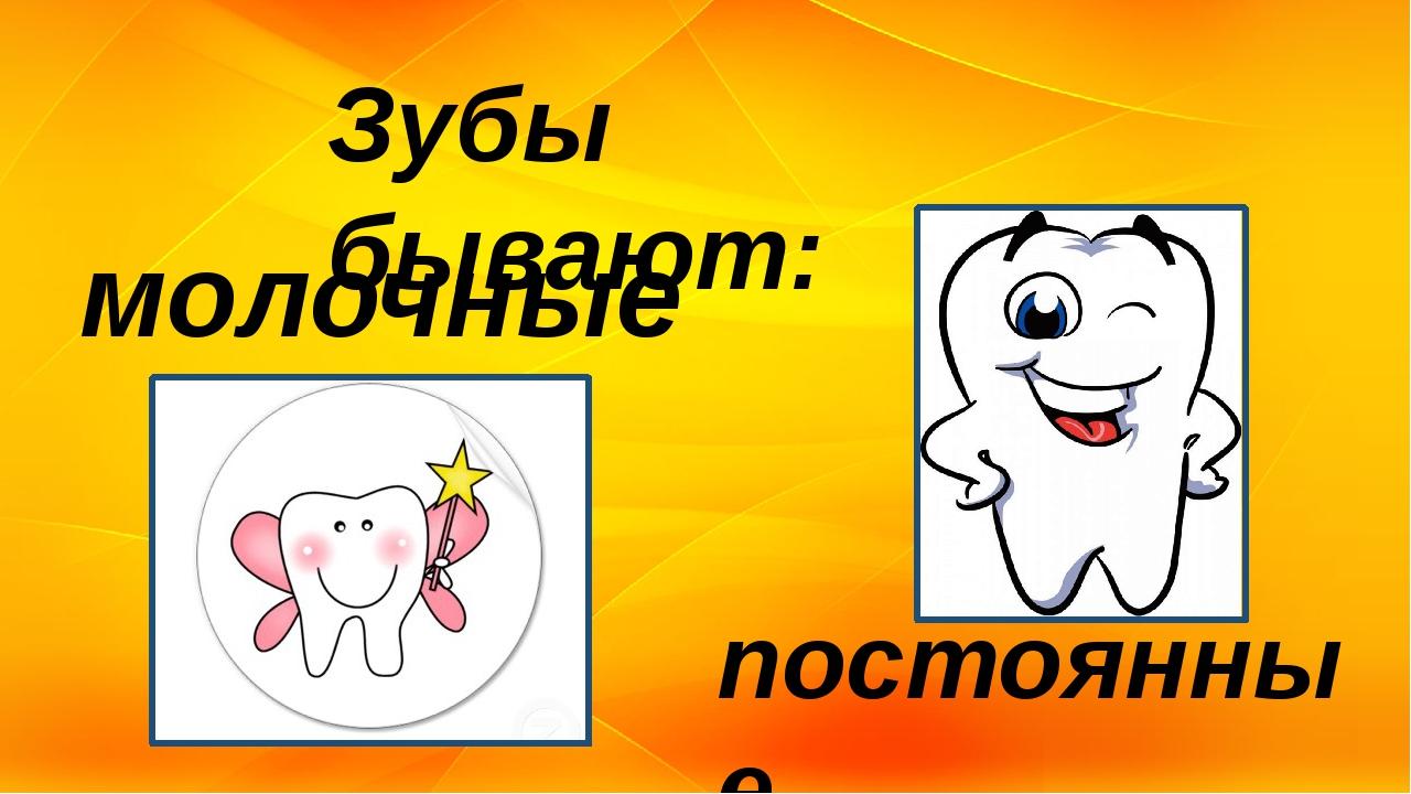 Зубы бывают: молочные постоянные
