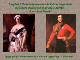 Впервые в Великобритании ель в доме нарядили Королева Виктория и принц Альбер