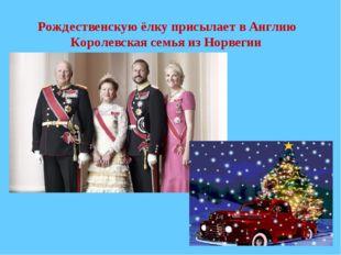 Рождественскую ёлку присылает в Англию Королевская семья из Норвегии