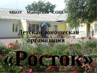 МБОУ Майорская СОШ Детская юношеская организация «Росток»