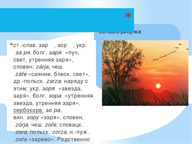 ст.-слав.зарѩ, зорѩ,укр.за́ря,болг.заря́«луч, свет, утренняя заря»,сло...