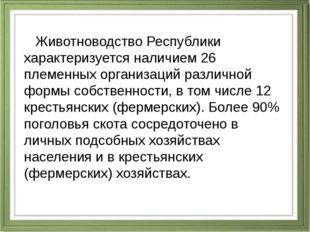 Животноводство Республики характеризуется наличием 26 племенных организаций