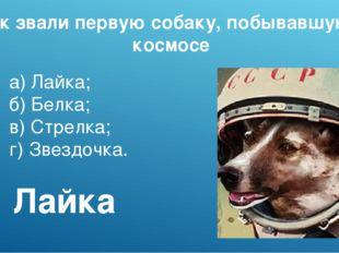 Как звали первую собаку, побывавшую в космосе а)Лайка; б)Белка; в)Стрелка;