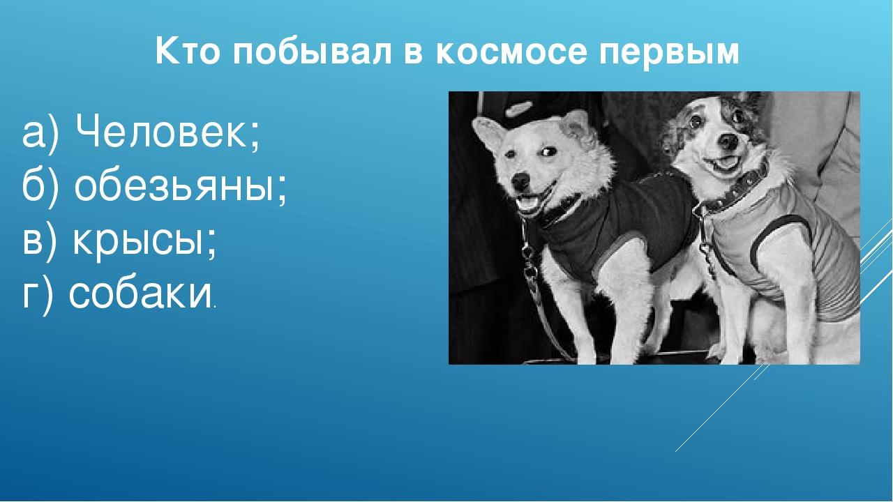 Кто побывал в космосе первым а)Человек; б)обезьяны; в)крысы; г)собаки.