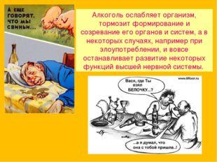 Алкоголь ослабляет организм, тормозит формирование и созревание его органов и