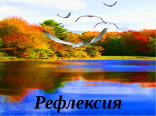Рефлексия