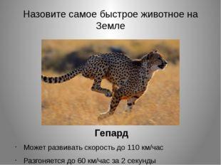 Назовите самое быстрое животное на Земле Гепард Может развивать скорость до 1