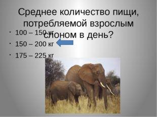 Среднее количество пищи, потребляемой взрослым слоном в день? 100 – 150 кг 15