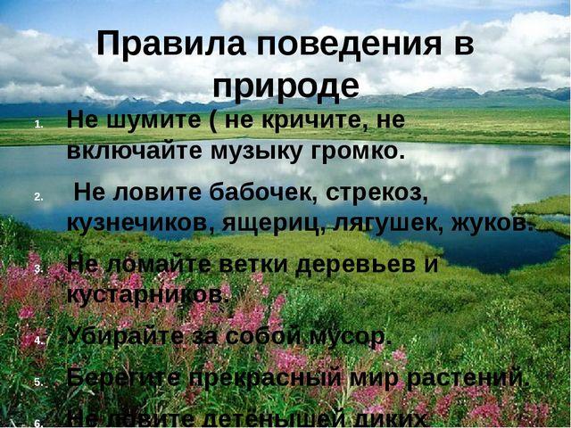 Правила поведения в природе Не шумите ( не кричите, не включайте музыку громк...