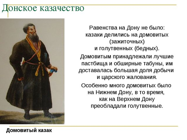 Донское казачество Равенства на Дону не было: казаки делились на домовитых (з...