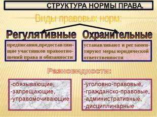 -уголовно-правовые, -гражданско-правовые, -административные, -дисциплинарные