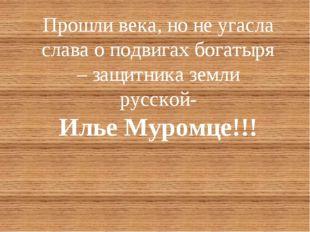 Прошли века, но не угасла слава о подвигах богатыря – защитника земли русской