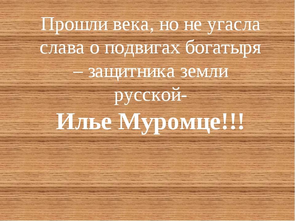 Прошли века, но не угасла слава о подвигах богатыря – защитника земли русской...