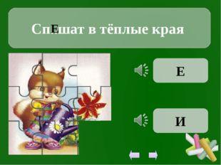 Сп..шат в тёплые края Е Е И