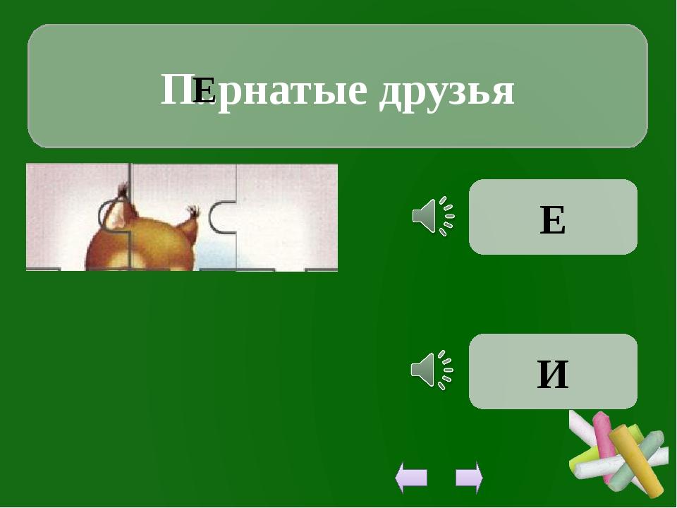 П..рнатые друзья Е Е И